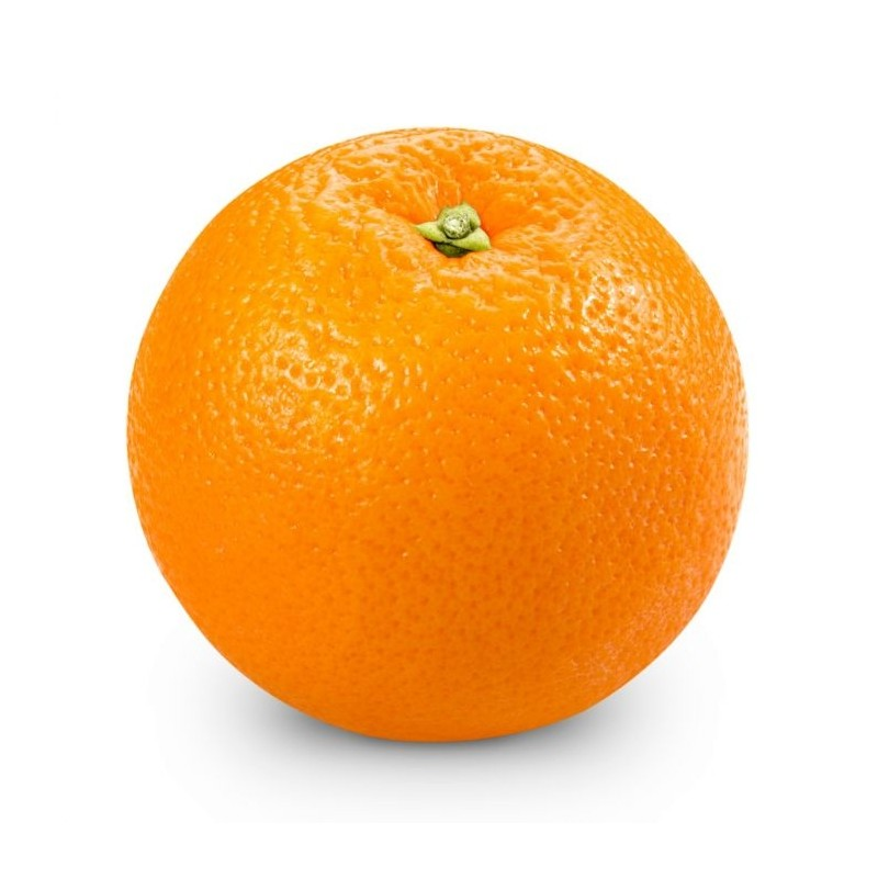Belladonna Oranges